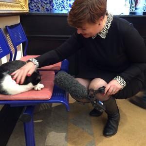 museum cat Oswald